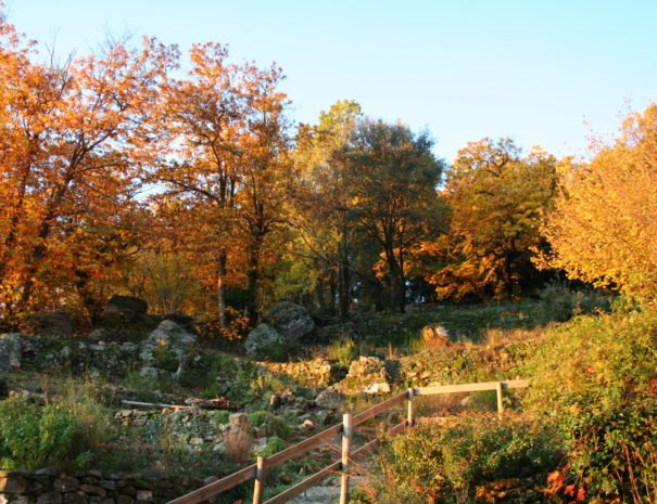 Longitude-Jardin